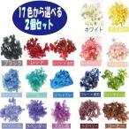 プリザーブドフラワー 花材 材料 アジサイ 紫陽花 ハーバリウム ボタニカルキャンドル 15色から選べる4色 フラワーショップ アイズ