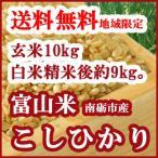 こしひかり玄米10kgを白米に精米して出荷(白米精米後約9kg)