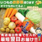 あすつく 常備野菜セット Mサイズ 新鮮 おまけ付き