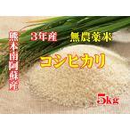 新米29年産 熊本南阿蘇産 無農薬米 コシヒカリ 5kg 玄米
