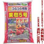 ((条件付き送料無料!))((あかぎシリーズ))果樹5号 10K