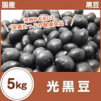 光黒豆 黒豆 5kg(1kg×5袋) 令和元年産 収穫 北海道産 国産 黒豆茶 まとめ買い