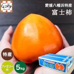 送料無料 愛媛県八幡浜特産富士柿ファミリー用約6キロ