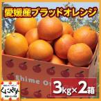 「お試しタロッコ3×2」【送料無料】【希少品】【お試し品】愛媛産ブラッドオレンジ6キロ(3キロ×2箱)(タロッコ)