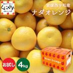 「お試しナダオレンジ2×2」 送料無料,お試し品4kg(2kg×2箱)皮むき簡単食べ易い冷やして食べるとひんやりジューシー