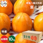 送料無料 愛媛県八幡浜特産富士柿お得用10キロ