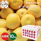 送料無料 「お得用ナダオレンジ10kg」皮むき簡単食べ易い冷やして食べるとひんやりジューシー(河内晩柑,かわちばんかん)