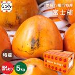 「訳あり富士柿3×2」富士柿 6キロ(3キロ×2箱) 大きさ不揃い 訳あり 柿,のしギフト対応不可