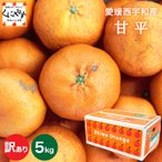 其它 - 「訳あり甘平5」【送料無料】【数量限定】訳あり愛媛甘平(かんぺい)5kg(5kg×1箱),せとかにも匹敵する柑橘,のしギフト対応不可