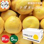 「訳ありナダオレンジ5kg」送料無料(別名:河内晩柑,かわちばんかん,宇和ゴールド,ジューシーオレンジ,美生柑,愛南ゴ