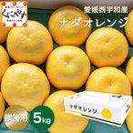 送料無料 高級果物 「贈答用ナダオレンジ5kg」皮むき簡単食べ易い冷やして食べるとひんやりジューシー(河内晩柑,かわちばんかん)