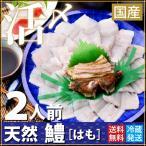 天然活け〆鱧 (ハモ) はも骨切り(250g)2人用 瀬戸内産の鱧を一度も凍らせない完全冷蔵でお届けします