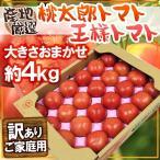 """蔬菜 - 【送料無料】訳あり """"桃太郎トマトor王様トマト"""" 約4kg 大きさおまかせ 産地厳選"""