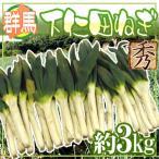 kurashi-kaientai_1007010-shimonita3kg