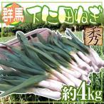 kurashi-kaientai_1007010-shimonita4kg