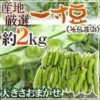 kurashi-kaientai_1009048-soraoma2kg