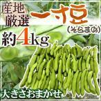 kurashi-kaientai_1009048-soraoma4kg