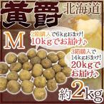 """【送料無料】北海道 北見産 じゃがいも """"黄爵"""" 秀品 Mサイズ 約2kg《2箱購入で10kgでお届け、3箱購入で20kgでお届け》男爵芋【予約 8月末以降】"""