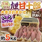 """茨城県 旭村 熟成高糖度さつまいも """"旭甘十郎 紅はるか"""" ちょっと訳あり 約5kg 大きさおまかせ サツマイモ【予約 1月末以降】 送料無料"""