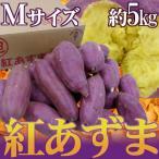 """千葉・茨城県産 """"紅あずま"""" Mサイズ 約5kg さつまいも【予約 入荷次第発送】"""