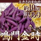 """徳島県産 """"鳴門金時"""" 訳あり 約10kg 大きさおまかせ さつまいも【予約 9月以降】"""