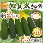 """石川県 加賀野菜 """"加賀太きゅうり"""" 4〜5本前後 約2kg【予約 5月以降】"""