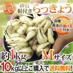 kurashi-kaientai_1082046-m1kg