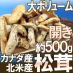 """【予約】カナダ・北米産 """"松茸"""" 約500g 開き 大きさおまかせ(9月上旬〜10月頃の発送予定)"""