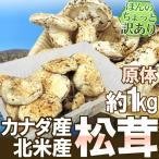"""【予約】カナダ・北米産 """"松茸"""" 約1kg 大きさおまかせ 原体・ほんのちょっと訳あり(9月上旬〜10月頃の発送予定)"""