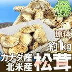 """【緊急スポット】カナダ・北米産 """"松茸"""" 約1kg 原体・ほんのちょっと訳あり 大きさおまかせ【2週間以内の発送】"""