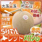 """北海道 赤肉メロン """"らいでんレッドメロン"""" 1玉 約2kg前後《4玉購入で送料無料!7玉購入で1玉おまけ》【予約 7月以降】"""