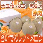 """北海道 赤肉メロン """"らいでんレッドメロン"""" 4〜5玉 約8kg 産地箱【予約 7月以降】"""