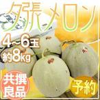 """【送料無料】北海道 """"夕張メロン"""" 4玉〜6玉 約8kg 共撰・良品以上【予約 7月中旬以降】"""