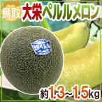 """鳥取県 """"大栄ペルルメロン"""" 1玉 約1.5kg以上【予約 6月下旬以降】"""