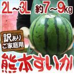 """【送料無料】熊本県産 """"熊本すいか"""" 訳あり 大玉 2L〜3Lサイズ 約7kg〜9kg【予約 4月中旬以降】"""