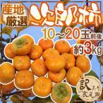 """【送料無料】""""次郎柿"""" 訳あり 約3kg 10〜20玉前後 産地厳選【予約 10月下旬〜11月】"""