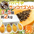 "Papaya - 【送料無料】宮崎パパイヤ ""サンライズソロ"" 3〜4玉 約2kg【予約 4月下旬以降】"