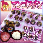 """【送料無料】タイ産 """"マンゴスチン"""" M〜L 24〜36玉 約2〜2.5kg【予約 5月以降】"""