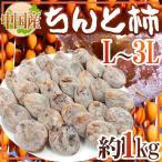 """【送料無料】中国産 """"ちんと柿"""" 約1kg L〜3L"""