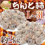 """【送料無料】""""ちんと柿"""" L〜3L 約2kg 中国産【予約 12月以降】"""