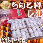 """【送料無料】中国産 """"ちんと柿"""" 約5kg L〜3L"""
