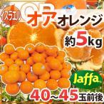 """【送料無料】""""オア オレンジ"""" 40〜45玉前後 約5kg イスラエル産 オアマンダリン"""