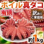 kurashi-kaientai_3062199-b-tako1kgw