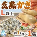 """【送料無料】""""広島産 むき牡蠣"""" 大粒2Lサイズ 30粒前後 約1kg(解凍後正味約850g)加熱用/生/冷凍剥きカキ/牡蛎"""
