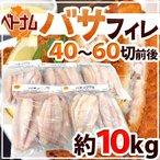 """【送料無料】ベトナム """"白身魚 バサフィレ"""" 40〜60枚前後 約10kg 三枚おろし"""