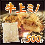 kurashi-kaientai_5525048-u-jmino500g