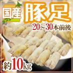 kurashi-kaientai_5538048-b-ashi10kg