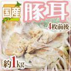 kurashi-kaientai_5538048-b-mimi1kg