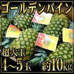 """凤梨 - フィリピン産 """"ゴールデンパイン"""" 超特大4〜5玉 約10kg"""