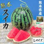 スイカ 熊本県産 1箱 Lサイズ・5kg(1玉)  高級すいか/等級:秀(赤)|化粧箱入り 贈答用 ギフト・送料無料